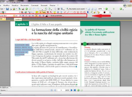 COMPILARE I FILE PDF